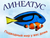 ЛИНЕАТУС магазин аквариумистики Санкт-Петербург